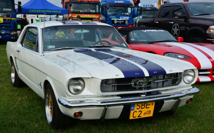 stary ford mustang