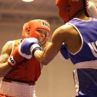 boxers-858422_1920