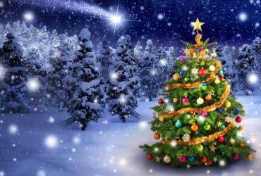 choinka bożonarodzeniowa na tle ośnieżonego lasu