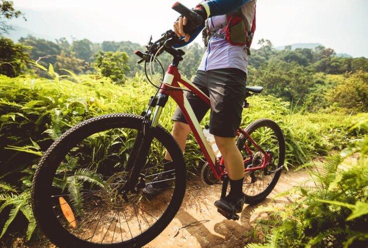 Jazda na rowerze pośród natury