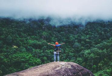 Podróżnik w dżungli