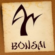 logo Bonsai SPA